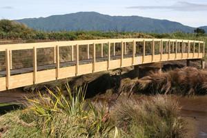 A section of the Te Araroa Trail. Photo / File photo