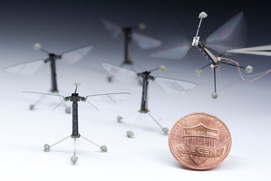 Harvard University has developed a robot insect based on the biology of a fly. Photo / Supplied