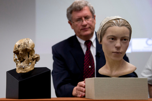"""A facial reconstruction of """"Jane of Jamestown"""" sits alongside the recovered skull and small cuts can be seen on the bones (right). Photo / AP"""