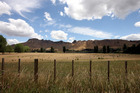 Looking over Craggy Range Winery towards Te Mata Peak from Tuki Tuki Road. Photo / APN