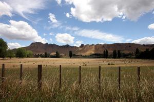 Looking over Craggy Range Winery towards Te Mata Peak from Tuki Tuki Road. Photo / APN