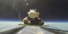 Kiwi cow mascot makes space history