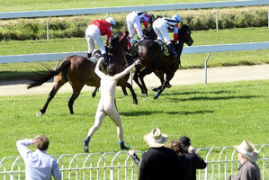 Samuel Ermerins risks being trampled by horses during the main race of the Melbourne Cup Day at the Wingatui racecourse. Photo / Peter McIntosh