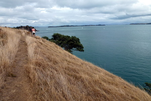 The cliff-top Matiatia Headland Walkway has stunning views of the Hauraki Gulf with Auckland in the misty distance. Photo / Justine Tyerman