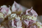 Rosewater and raspberry meringue kisses. Photo / Michael Craig