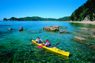 Tourism brochures promote activities such as sea kayaking in Abel Tasman National Park but behind the scenes, most of the conservation estate is under attack from uncontrolled pests.