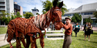 Five-time Tony Award-winning show  War Horse  has been scratched from its New Zealand run. Photo / Dean Purcell