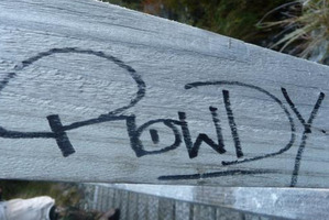 An example of the tagging on the Routeburn Track. Photo / Supplied
