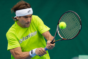 David Ferrer during his morning training session at the Heineken Open in Auckland yesterday. Photo / Greg Bowker
