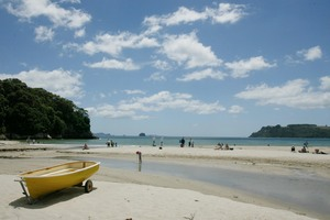 Cooks Beach in the Coromandel. Photo / File / Greg Bowker
