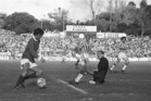 George Best starred at Carlaw Park. Photo / NZ Herald