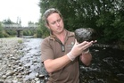 River monitoring by Greater Wellington Regional Council (GWRC) has shown increased coverage of toxic algae. Photo / AP