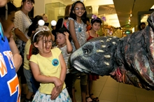 Five year old Eva Josephs comes face to face with Basil at Auckland Museum. Photo / Krzysztof Pfeiffer