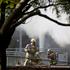 Fire crews attend the scene of the blaze. Photo / Richard Robinson