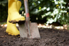 Wokring with boggy soil can damage its structure. Photo / Thinkstock