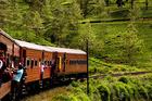 A local train from Ella to Nanu Oya weaves through the mountains and tea plantations of Sri Lanka. Photo / Babiche Martens