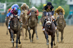 Oxbow leads the field home to win the Preakness Stakes yesterday. Photo / AP