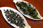 Zealong, which produces oolong tea, has established a tea house and estate at Gordonton, near Hamilton. Photo / Sarah Ivey