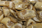 New DNA test can detect Bluff oyster-killing infection