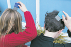 Rotorua parents battling head lice in their children are resorting to dangerous animal de-flea products. Photo / File