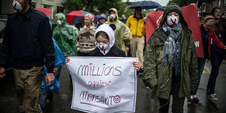 People carry signs during a protest against Monsanto in Montpelier, USA. Photo / AP