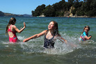 Buffalo Beach is popular with all ages looking for a great spot to swim in Whitianga. Photo / Alan Gibson
