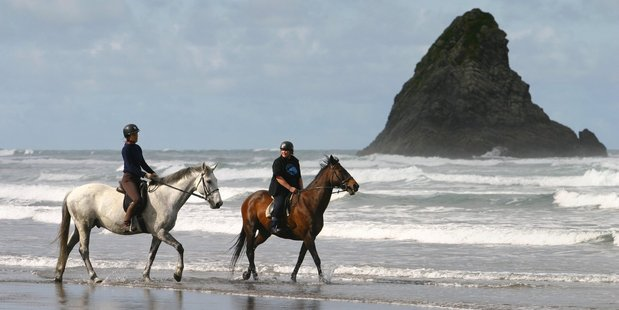 "The CNN site says Karekare is less ""touristy"" than nearby Piha. Its writer was attracted to the ""grandiose sweep of black sand"". Photo / APN"