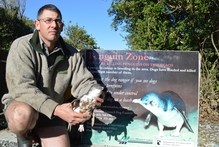 DOC biodiversity programme manager Brad Edwards with a dead penguin. The sign was installed today after the third death in a fortnight. Photo / Greymouth Star