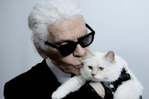 Karl Lagerfeld with his cat, Choupette. Photo / Facebook