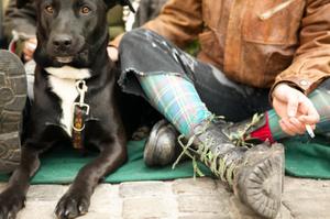 Dogs around smokers are more prone to cancer.Photo / Thinkstock