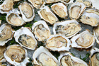 Oysters one of the most unpalatable foods - poll. Photo / Thinkstock