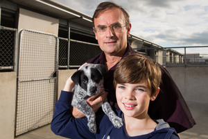 Ozzy the 8-week-old blue heeler-cross puppy has been renamed Frosty and is now with Stefan Becker, 11, and his dad Michael. Photo / Stephen Barker