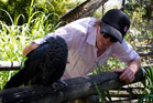 Meet the locals in the aviary at Adelaide's Botanic Garden. Photo / Sarah Ivey