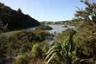 Views of Okura estuary scenic reserve, a reserve north of Auckland. Photo / Glenn Jeffrey