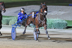 Border Control smashed the New Zealand mile all-aged record on his way to victory in Ashburton yesterday. File photo / Stuart McCormick