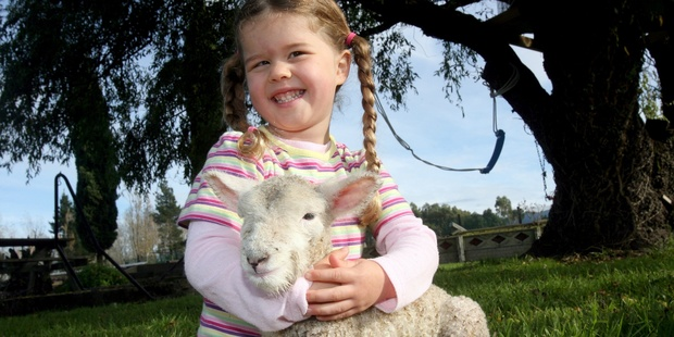 Farm stays offer hands-on experiences with animals. Photo / WTA