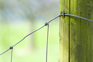 The man appeared to have jumped over a deer fence which had an 8 metre drop on the other side. Photo / Thinkstock
