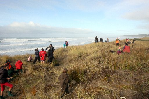 Whareama School teacher and pupils planting Golden Sand Sedge. Pingao ia native sand binding grass species in the sand dunes at Riversdale beach alongside the Riversdale Dune Restoration Group and Warren Field of GWRC.