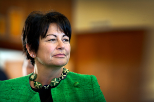 Education Minister Hekia Parata. Photo / David White