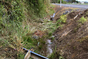 George Porter's body was left in this drain at the scene of a fatal car crash east of Opotiki, after emergency services left the scene.