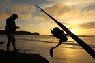 Recreational fishers are prepared to reduce minimum sizes to help the stocks recover. Photo / Alan Gibson