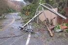 The storm has caused extensive damage in Wellington, with ripped up roads, toppled trees, damaged houses, crippled public transport and power cut to some 28,000 customers.