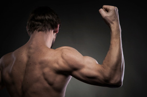 Strong shoulders have allowed humans to kill prey by hurling spears or rocks.Photo / Thinkstock