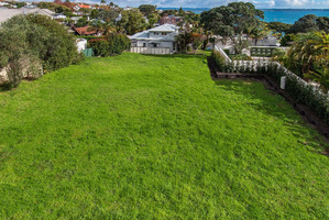 The 900sq m section in Cremorne St, Herne Bay, is up for tender.