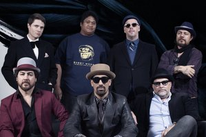Wellington's Fat Freddy's Drop sound more assured than ever on their third record blackbird.