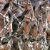 Danish horses standing in a row during the opening ceremony of the CHIO Equestrian Festival in Aachen, Germany. Photo / AP