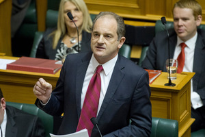 Labour Party leader David Shearer says he has the full support of his party. Photo / Mark Mitchell