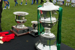 The Chatham Cup. Photo / file.