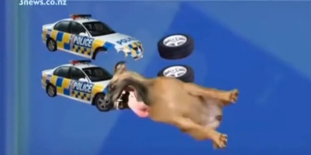 'Dog Attack Animation May Be Worst News Graphic Ever' says the Huffington Post.