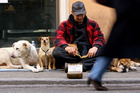 Cities have different methods of dealing with beggars. Photo / AP
